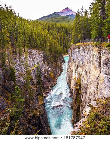 The picturesque waterfall Sanvapta Falls in Jasper National Park. Autumn trip to Canada. The concept of extreme and ecological tourism