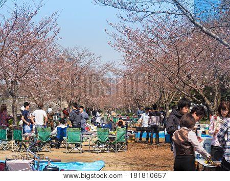 Osaka castle park, Osaka, Japan - April 3, 2017 : Osaka people enjoying Cherry blossoms festival in park. Hanami is Japanese tradition of welcoming spring.