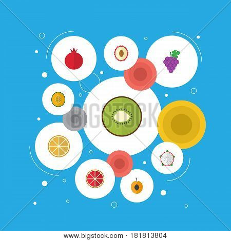 Flat Exotic Dessert, Orange, Nectarine And Other Vector Elements. Set Of Fruit Flat Symbols Also Includes Pomegranate, Cluster, Lychee Objects.