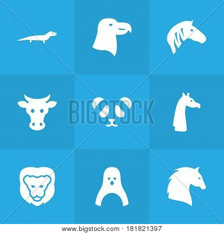 Set Of 9 Brute Icons Set.Collection Of Camelopard, Hoss, Sea Bird And Other Elements.
