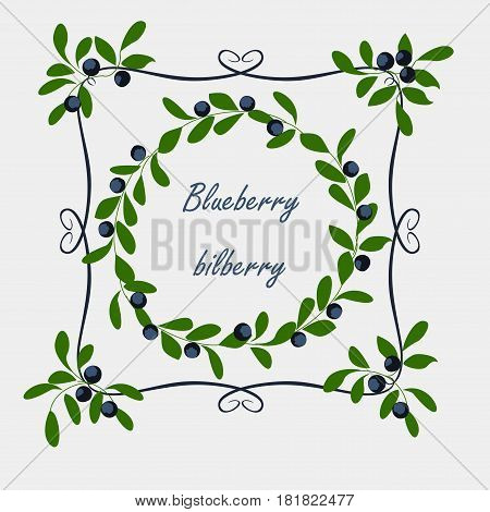 Background with blueberry. Vector background with branches, berries and leaves blueberry.