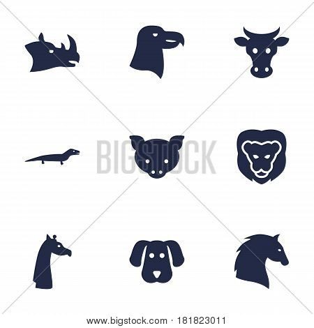 Set Of 9 Alive Icons Set.Collection Of Tortoise, Bird, Rhinoceros And Other Elements.