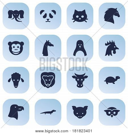 Set Of 16 Beast Icons Set.Collection Of Tomcat, Sea Bird, King And Other Elements.