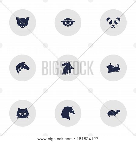 Set Of 9 Brute Icons Set.Collection Of Rhinoceros, Rooster, Tortoise And Other Elements.