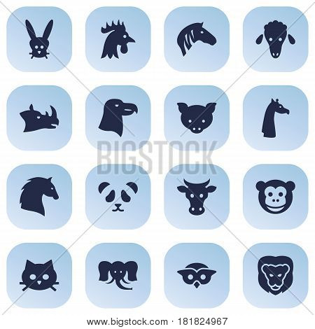 Set Of 16 Beast Icons Set.Collection Of Rooster, Hoss, Ape And Other Elements.
