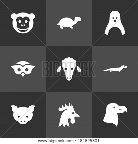 Set Of 9 Brute Icons Set.Collection Of Hog, Mutton, Bird And Other Elements.