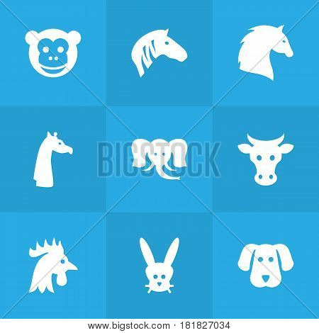 Set Of 9 Brute Icons Set.Collection Of Hoss, Camelopard, Kine And Other Elements.