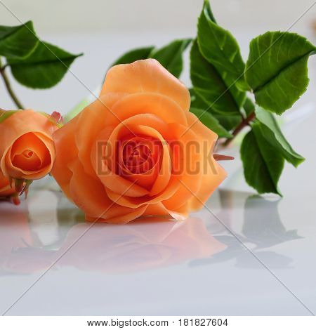 Wonderful clay art with orange roses flower relect on white background beautiful artificial flowers of craftsmanship poster