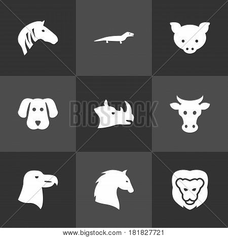 Set Of 9 Brute Icons Set.Collection Of Kine, Rhinoceros, Hound And Other Elements.