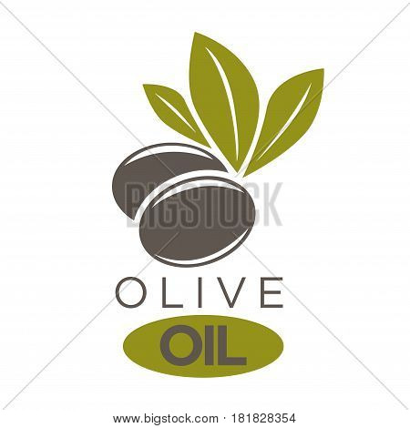 Vector illustration of company label two black olivic berries with leaves near inscriptions. Healthy condiment template with colorful sticker. Olive oil extra virgin flat logotype on white.