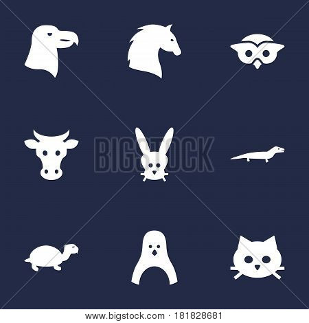 Set Of 9 Alive Icons Set.Collection Of Tomcat, Bird, Tortoise And Other Elements.