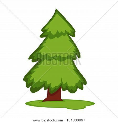 Tall fir tree on piece of grass land vector illustration isolated on white background. Fresh plant in clean environment concept. Pine sprute with greenery foliage in flat design cartoon style