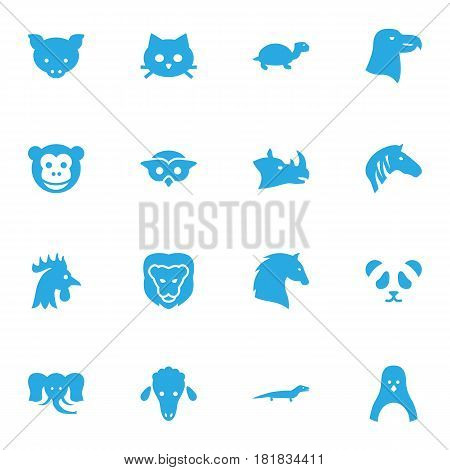 Set Of 16 Brute Icons Set.Collection Of Bishop, Steed, Hog And Other Elements.