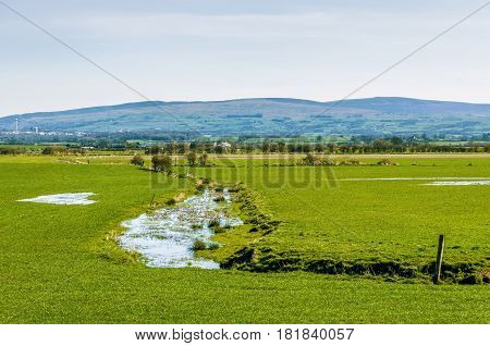 An English wetland scene with the hills of the Forest of Bowland in the background.