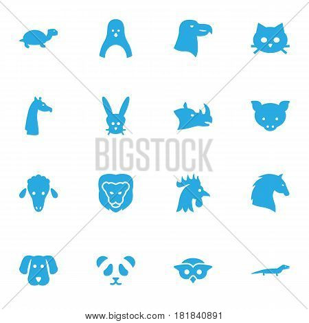 Set Of 16 Beast Icons Set.Collection Of Tortoise, Owl, Mutton And Other Elements.