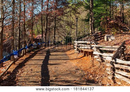 The curved footpath in the park on the hill Helen USA