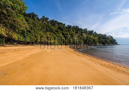 remote empty smooth golden sand beach with calm sea and a dense forestted shoreline.