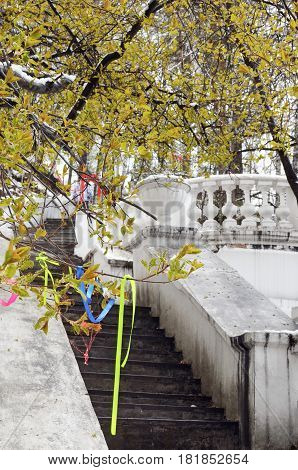 Tree with sacred rags and old concrete stairs with decorative vase and railing