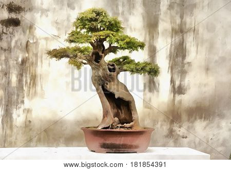 Colorful painting of Bonsai tree Classical Garden Suzhou Jiangsu China