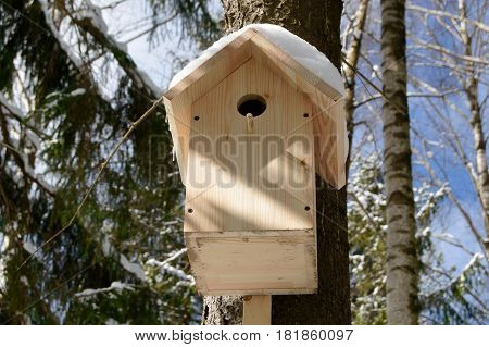 Wooden birdhouse for birds in a tree. Handmade Feeder for bird in winter forest. Caring for wild animals in difficult season.