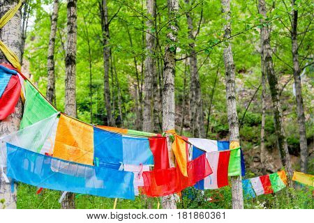 Huzhu, China - Jul 7 2014: Prayer Flag At Gonlung Champa Ling(youningsi). A Famous Monastery In Huzh