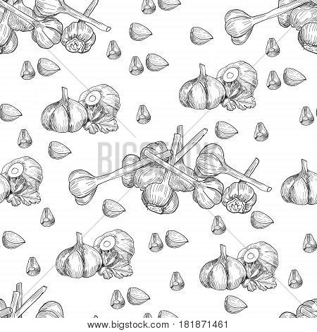 Vector hand drawn seamless pattern of garlic. Stylized black and white sketch of a bundle of garlic groves tied with ribbon.