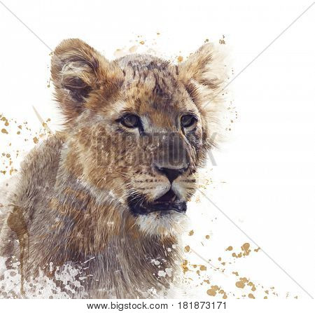 Digital Painting Of Young Lion