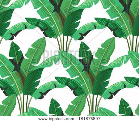 Seamless tropical leaves palm repeat wallpaper design