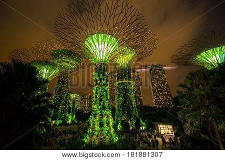 Singapore Night Skyline At Gardens By The Bay