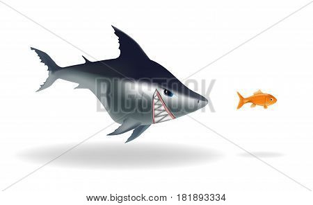Big scary shark chasing goldfish on a white background