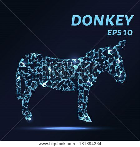 Donkey Consists Of Points, Lines And Triangles. The Polygon Shape In The Form Of A Silhouette Of A D