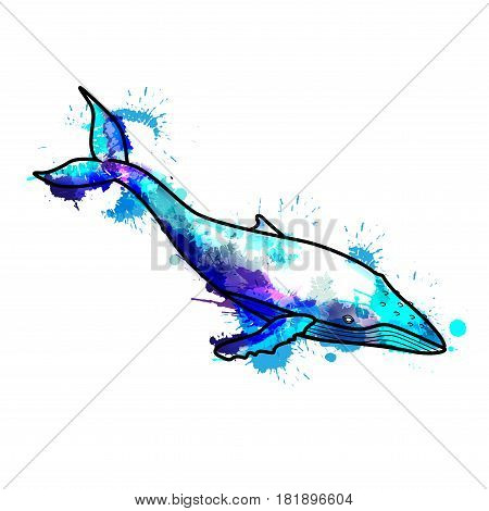 Humpback whale made of colorful splashes on a white background