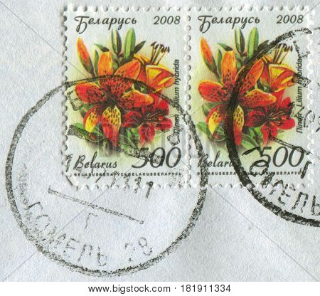 GOMEL, BELARUS, APRIL 15, 2017. Stamp printed in Belarus shows image of  The Lilium hybrida, circa 2008.