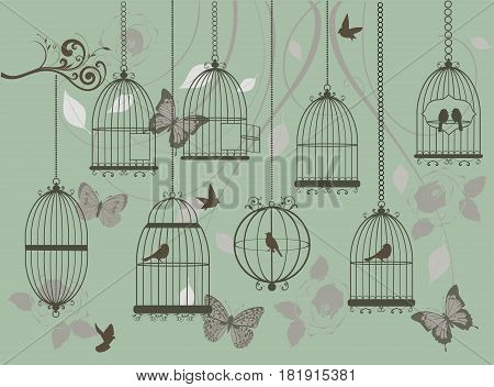 Vector illustration of vintage background with birds cages butterflies