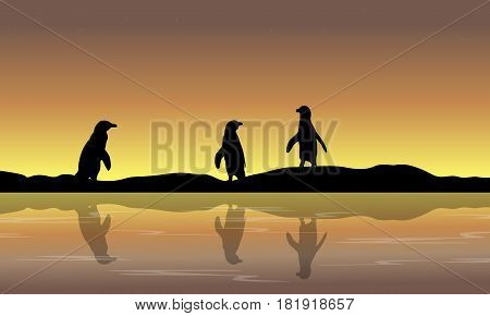Collection penguin scenery silhouettes vector art illustration
