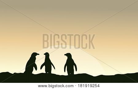 At sunrise scenery with penguin silhouettes vector illustration
