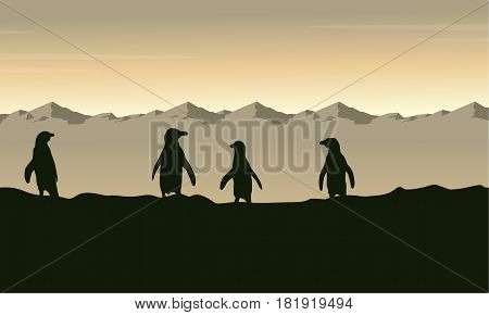 Collection penguin at sunrise scenery vector illustration