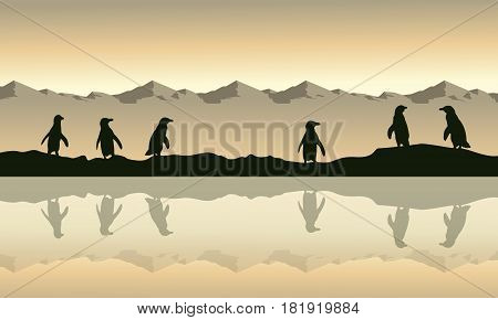 Collection penguin on beach at sunrise scenery vector illustration