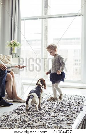little girl playing with her dog in the spacious living room near a large window
