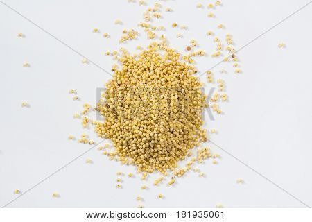 Yellow millet groats background, raw millet isolated
