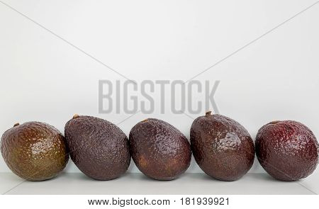 Brown avocado fruit in row isolated white background