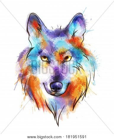Colorful watercolor wolf's head on a white background