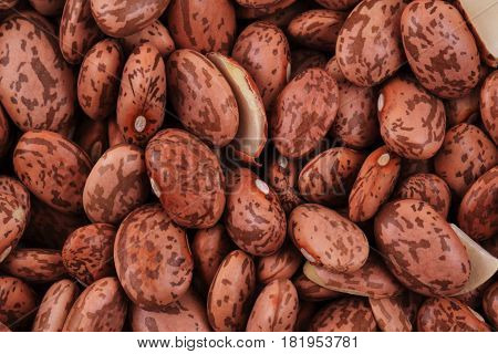 Dried Beans Texture