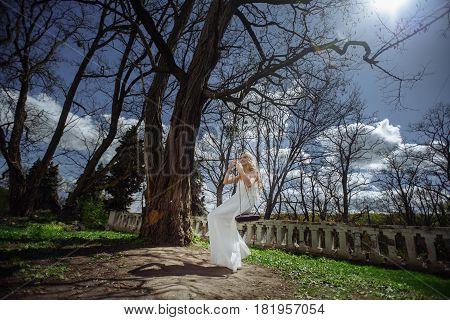Outdoor Summer Portrait Of Young Pretty Cute Girl. Beautiful Woman Posing On Fairytale Swing Near Sc