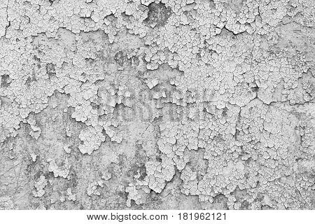 Grunge White Wall Texture Background