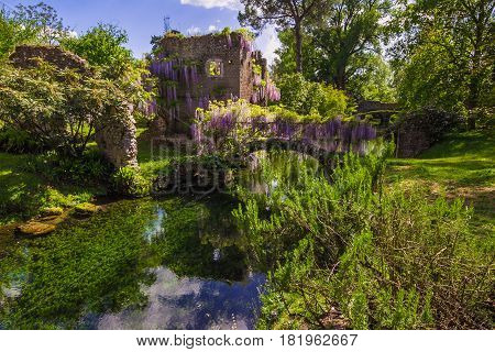 The romantic Garden of Ninfa is a landscape garden in the territory of Cisterna di Latina