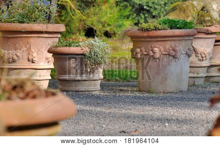 big terracotta flower pots in a garden