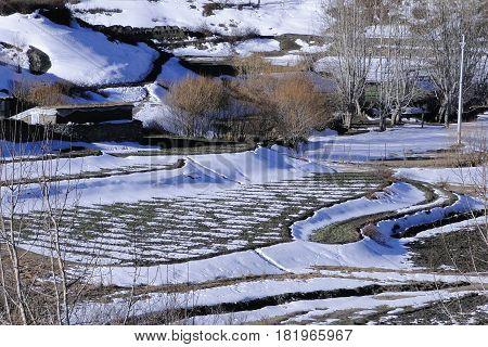 Winter Scenery In Mustang, Nepal