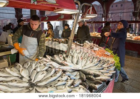 February 18, 2017 - fish market in Venice, Italy Fresh seafood photographed in fish market