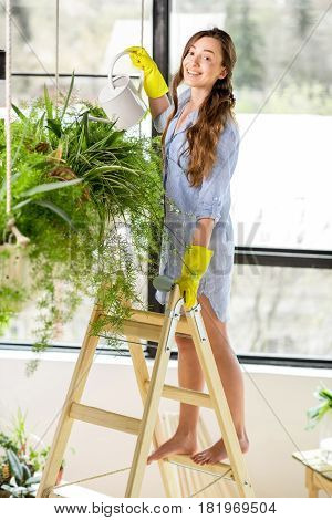 Young female gardener taking care of plants standing with watering can on the ladder in the orangery